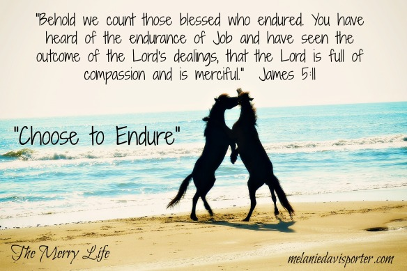 choose to endure
