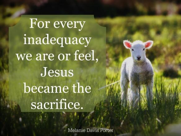 aa lamb final