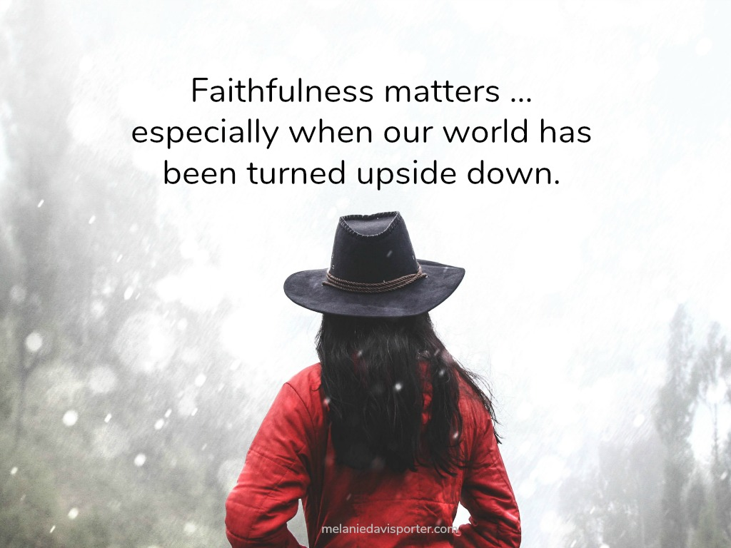Faithfulness Matters